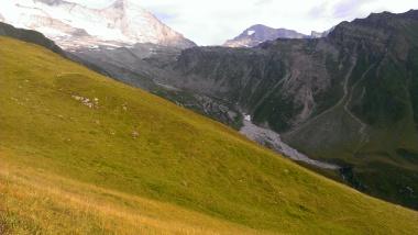 Blick ins Wildlahntal