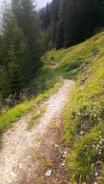 Wanderweg durchs Wildlahntal