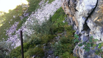 Alter Steig im Valsertal