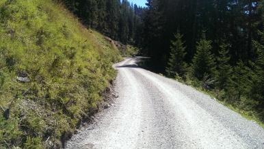 Am Wolfer Berg