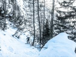 Steiler Aufstieg durch den Wald